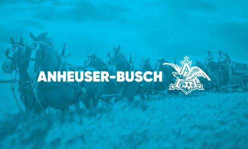 Anheuser Busch logo